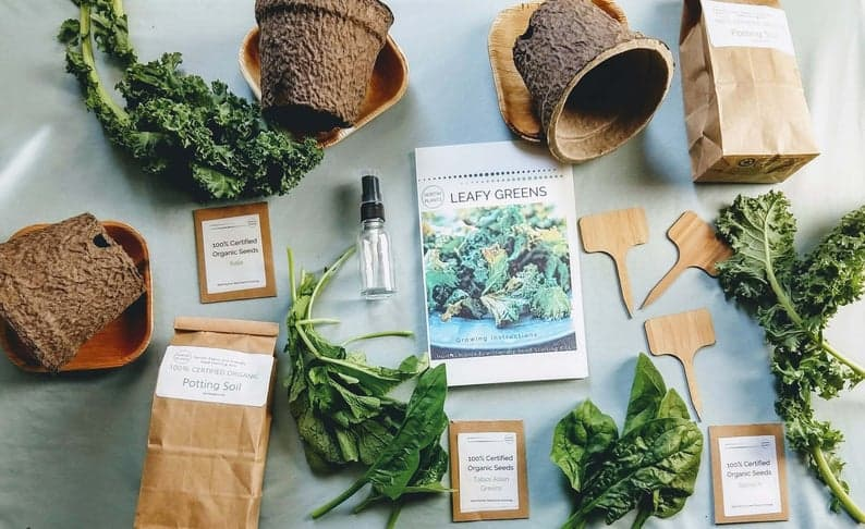 Hortiki Plants   Black-Owned Etsy Gifts for the man who loves gardening.