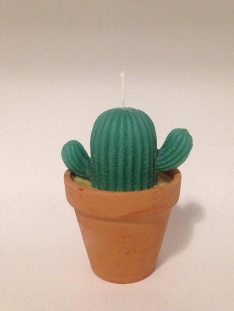 Cool Shaped candles | Cactus pot